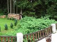 Josefův Důl - chata k pronájmu - 16