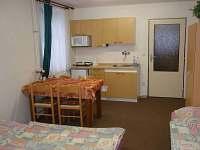 4 lůžkový pokoj - ubytování Tanvald