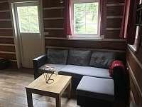 Zlatá Olešnice - apartmán k pronájmu - 8