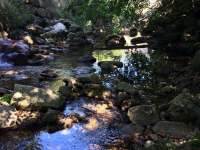Potok za saunou - chalupa k pronájmu Bílý Potok