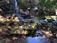 Potok za saunou - Bílý Potok
