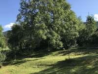 Zahrada - Bílý Potok