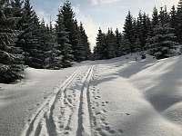 zima - Albrechtice v Jizerských horách