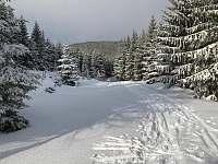 zima běžky - Albrechtice v Jizerských horách