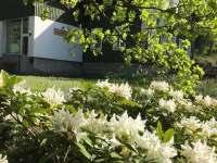 Bludička jaro - chata ubytování Josefův Důl