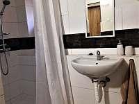 Koupelna v pokoji - chata k pronajmutí Albrechtice v Jizerských horách