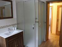 Chata Tereza - sprchový kout - pronájem Smržovka