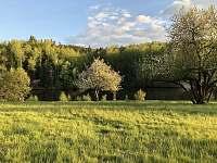Chaty na Tajchu - chata k pronajmutí - 8 Liberec