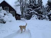 Aktuální sněhové podmínky - Jiřetín pod Bukovou