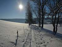 Cesta na vrchol Tanvaldského Špičáku (800m od chalupy)