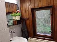 malá koupelna - pronájem chalupy Černá Říčka