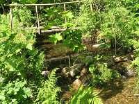 potok na zahradě - Černá Říčka