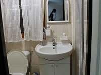 Koupelna - pronájem chaty Albrechtice v Jizerských horách