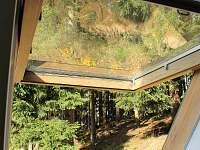 Výhled do lesa z ložnice - chata ubytování Albrechtice v Jizerských horách
