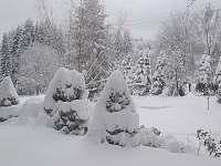 Zahrada v zimě - Bedřichov