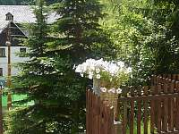 Ubytování V údolí - apartmán ubytování Kryštofovo Údolí - 5