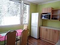 Kuchyň - pronájem apartmánu Jiřetín pod Bukovou