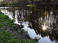 pohoda u řeky Lužnice - chata k pronájmu Planá nad Lužnicí