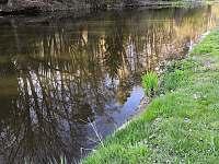 rybaření u řeky Lužnice - Planá nad Lužnicí