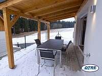 Moderní chata - Lipno 056 - pronájem chaty - 12 Frymburk - Větrník