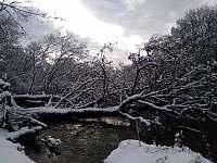 Řeka Lužnice - Holičky