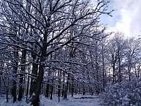 Zimní pohoda - chalupa k pronájmu Holičky