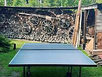 stolní tenis - pronájem chalupy Kamenná Lhota