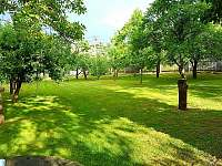 zahrada sad - Kamenná Lhota
