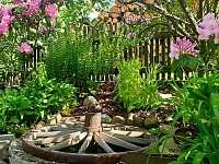 zahrada studánka - Kamenná Lhota
