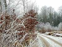 zima za chaloupkou - ubytování Kamenná Lhota