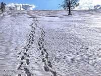 Zima v Borotíně -