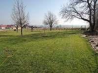 foto zadní zahrady