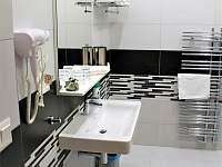 Apartmány Papík-koupelna Ap.č.3 - Nová Bystřice