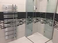 Ubytování - sprchový kout - pronájem apartmánu Nová Bystřice