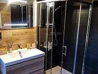 koupelna_rodinné apartmá - pronájem srubu Benešov nad Černou - Kuří