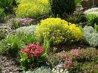 naše zahrada - pronájem chalupy Bor u Suchdola nad Lužnicí