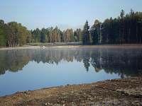 rašelinový rybník - chalupa k pronajmutí Bor u Suchdola nad Lužnicí