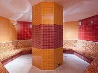 Dárek pro Vás - 30% sleva do sauna světa - Wellness hotelu Frymburk -