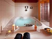 Relax u lipna - apartmán - 33 Frymburk