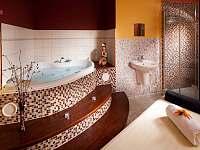Relax u lipna - apartmán - 37 Frymburk