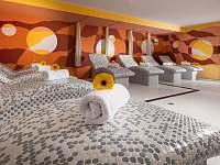 Relax u lipna - apartmán - 40 Frymburk
