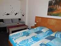 Relax u lipna - apartmán k pronájmu - 3 Frymburk