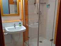 koupelna - apartmán k pronajmutí Frymburk