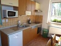 Apartmán pro 11 osob - rekreační dům k pronájmu Lipno nad Vltavou