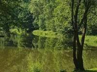 Chata u řeky Lužnice - chata - 41 Stádlec