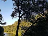 Chata u řeky Lužnice - chata - 40 Stádlec