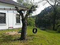 Chata u řeky Lužnice - chata k pronajmutí - 4 Stádlec