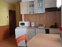kuchyň 1 - apartmán k pronajmutí České Budějovice