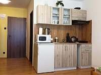 pokoj 3 + kuchyňka - apartmán k pronajmutí České Budějovice