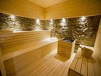 Sauna - apartmán k pronájmu Stráž nad Nežárkou - Dvorce